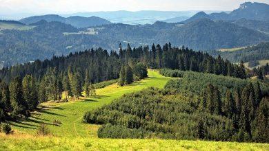 Góry, które często i chętnie odwiedzają turyści są często zaśmiecone. Stąd apel i akcja. [fot. archiwum]