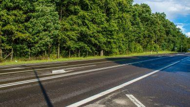 GDDKiA zamyka przejścia dla zwierząt wzdłuż autostrad i dróg ekspresowych. Taką decyzję podjął premier (fot.poglądowe/www.pixabay.com)