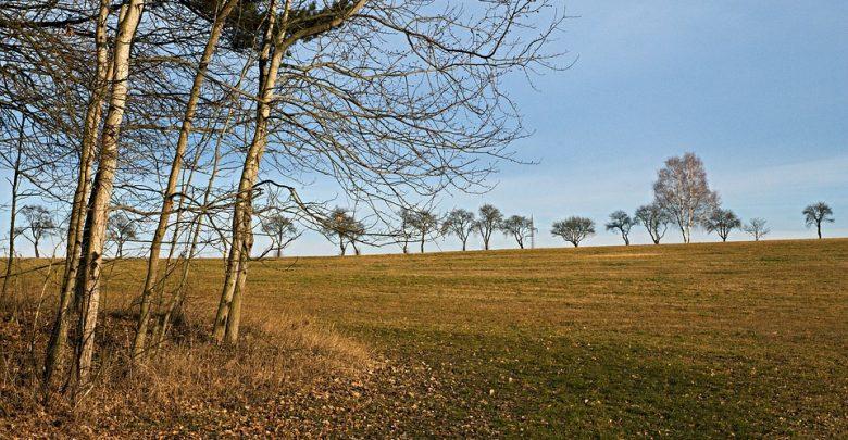 """Powiedzenie """"w marcu jak w garncu"""" sprawdzi się w najbliższych dniach. Pogoda na niedzielę zapowiada się wietrznie. IMGW wydał ostrzeżenia dla południa kraju (fot.poglądowe/www.pixabay.com)"""