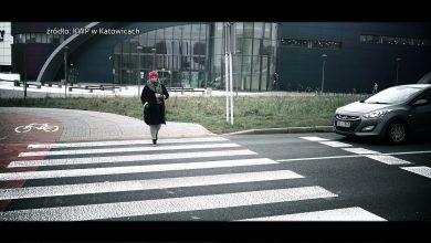 Rozjechany przez BMW pies i kobieta w ciąży kontra tramwaj. Policja po serii wypadków rusza ze specjalną akcją!