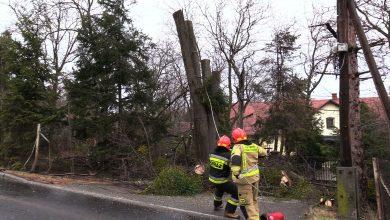 Mocny wiatr dał się we znaki mieszkańcom powiatu bielskiego wczoraj późnym wieczorem. Przez całą noc siał spustoszenie w regionie