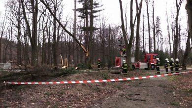 Gwałtowne wichury przeszły przez woj. śląskie. Strażacy wyjeżdżali do zdarzeń blisko 600 razy