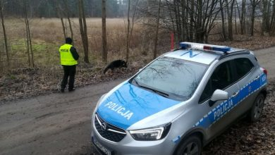 Śląskie: Ogromna akcja poszukiwawcza z happy endem! 67-latek odnaleziony