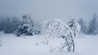 Śląskie: Śnieg pada? To dopiero początek! Jest OSTRZEŻENIE METEO przed zamieciami! (fot.pixabay.com)