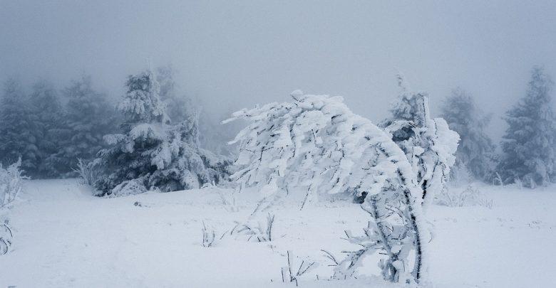 Prosimy o wstrzymanie się z wychodzeniem na babiogórskie szlaki do czasu poprawy warunków pogodowych i terenowych. [fot. poglądowa / www.pixabay.com]