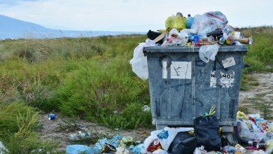 Żyjemy w czasach, w których ekologiczne podejście do otaczającego nas świata jest z roku na rok coraz ważniejsze,   a segregacja i recykling śmieci oraz odpadów tym bardziej. Mysłowicki Zakład Oczyszczania Miasta pomaga mieszkańcom i środowisku - a jak?  Sami zobaczcie! [www.pixabay.com]