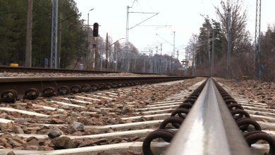 Tory co Centralnego Portu Komunikacyjnego rozjadą rezerwat w Jaworznie?!