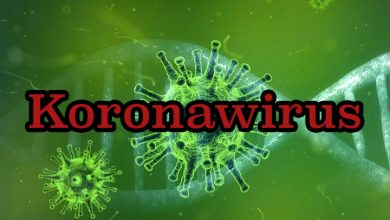 Teraz także w laboratorium Narodowego Instytutu Onkologii w Gliwicach wykonywane są testy na obecność koronawirusa fot. pixabay.com