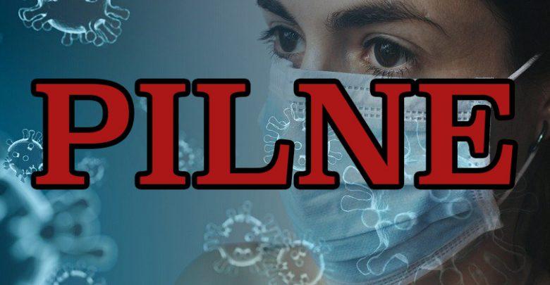 Znowu najwięcej na Śląsku! KOMUNIKAT Ministerstwa Zdrowia o nowych zakażeniach koronawirusem (fot.pixabay.com)