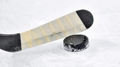 Katowice: MŚ w hokeju na lodzie odwołane! (fot.poglądowe/www.pixabay.com)
