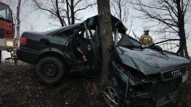 """Kompletnie zniszczony pojazd """"zawinięty"""" na drzewie. [fot. Policja Sląska]"""