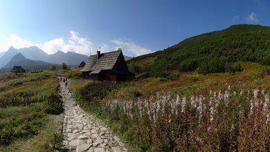 Cały teren Tatrzańskiego Parku Narodowego zamknięty do odwołania! (fot.poglądowe/www.pixabay.com)