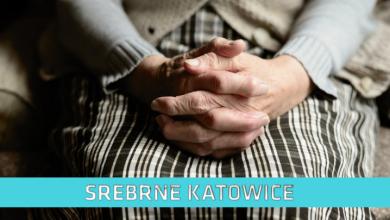 Srebrne Katowice: Koronawirus (fot. pixabay.com)