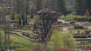 Jak podkreślają w Śląskim Ogrodzie Botanicznym wizyta będzie okazją do obejrzenia kwitnącej tarniny czy czereśni.