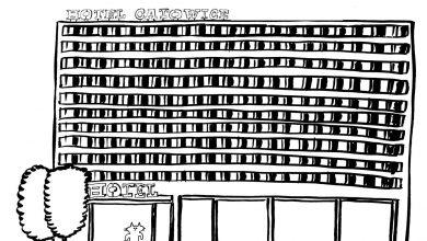 Czy w hotelu Catowice są kuwety, drapaki i inne udogodnienia dla sympatycznych futrzaków? [fot. Facebook Catowice]
