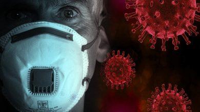 7 zgonów i prawie 140 nowych przypadków. Najwięcej jest na Śląsku [KORONAWIRUS 18.05.2020] (fot.pixabay.com)
