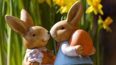 Święta Wielkanocne musimy spędzić w gronie najbliższej rodziny. [fot. www.pixabay.com]