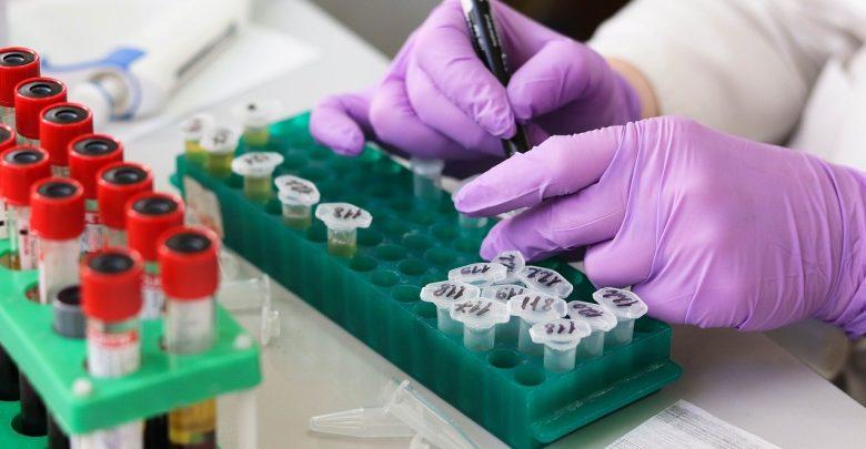 Naukowcy szukają panaceum na koronawirusa. Iwermektyna może być skutecznym lekiem. [fot. www.pixabay.com]