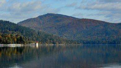 Śląskie: Wybrali się na ryby, a ich samochód stoczył się do jeziora. Wędkarze z mandatami (fot.poglądowe/www.pixabay.com)