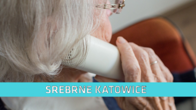 Srebrne Katowice (fot. pixabay.com)