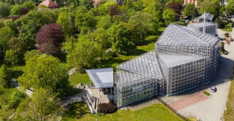 Gliwice: Palmiarnia otwarta od niedzieli, 31 maja. Na razie z limitem osób (fot.UM Gliwice)