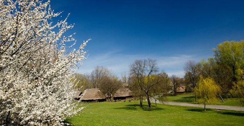 Skansen w Chorzowie (fot. silesia.info.pl)