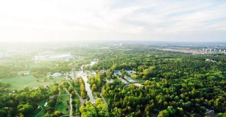 Park Śląski ogranicza koszenie (fot. silesia.info