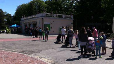 Śląskie ZOO w Chorzowie szturmowane! Ponowne otwarcie 1 czerwca ściągnęło tłumy!