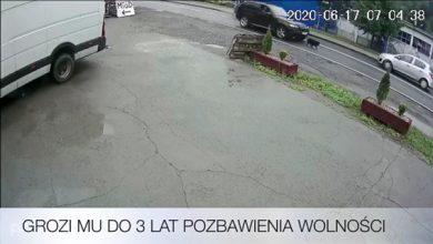 Wjechał z impetem w psa [WIDEO] Kierowca BMW odpowie za znęcanie się nad zwierzęciem (fot.policja.pl)