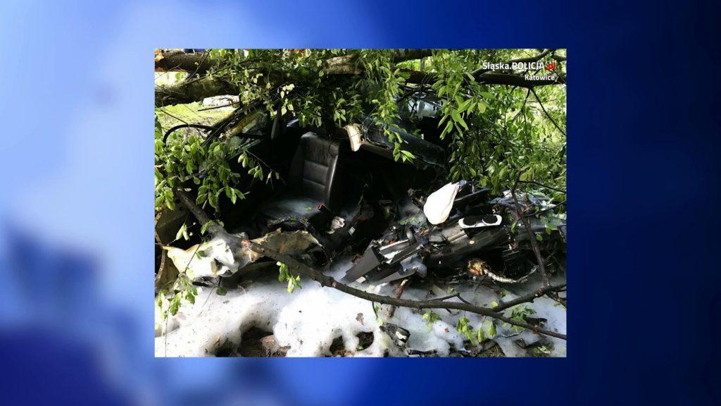 Katowice: Skoszone drzewa i BMW rozerwane na strzępy! Koszmarny wypadek na Beskidzkiej! (fot.KMP Katowice)
