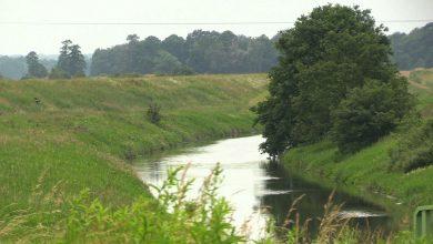 Sytuacja na śląskich rzekach jest stabilna. Przekroczenia stanów ostrzegawczych występują w kilku miejscach. Pogotowie przeciwpowodziowe zostało odwołane.