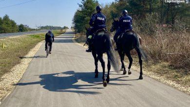 Częstochowa: Pościg za rowerzystami. Policyjne konie dały radę (fot.Śląska Policja)