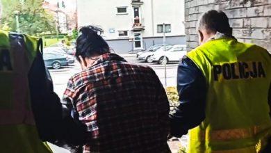 Znęcała się nad swoim dziećmi, później je porzuciła. Mieszkance Zabrza grozi 8 lat więzienia (fot.Śląska Policja)