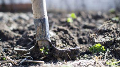 Uprowadził dwóch nastolatków i kazał im kopać sobie grób. Policjanci zatrzymali 29-latka (fot.poglądowe/www.pixabay.com)