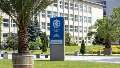 Gliwice: Są sygnałem zbliżających się wakacji. Ogromne palmy stanęły przed budynkiem Politechniki Śląskiej (fot.UM Gliwice)