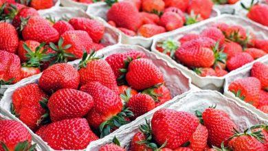Co jeść w czerwcu? (fot. pixabay.com)