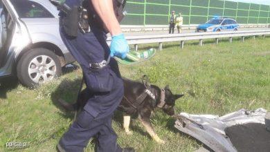 Tragiczny wypadek na autostradzie A1. Nie żyje kierowca hondy. Sprawca wypadku uciekł! Trwają poszukiwania (fot.policja.pl)