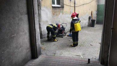 Próbowali zdemontować zbiornik z gazem. Interweniowała straż miejska. Fot. Straż Miejska w Katowicach