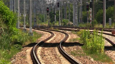 Wciąż do trasy przebiegu trasy uwagi mają władze Śląskiego Ogrodu Botanicznego