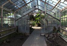 Egzotarium w Sosnowcu przejdzie totalna metamorfozę! Ma być gotowe za dwa lata