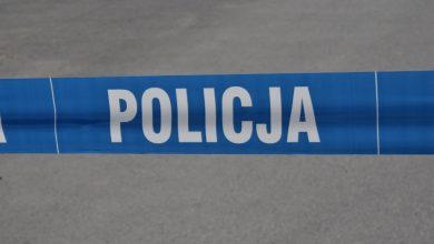 Kierowca skody zderzyłsię z łosiem. Nie żyje pasażer. 35-latek zginął na miejscu