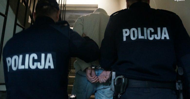 Śląskie: Zaatakował policjantów gazem, bo nie chciał zapłacić za kurs (fot.Śląska Policja)