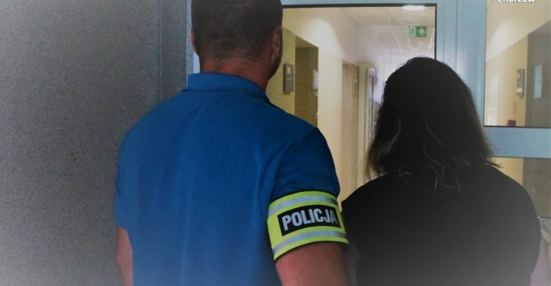 Skandal w Chorzowie! 46-letnia kobieta napadła na 9-letnie dziecko dla 5 zł! Fot. Śląska Policja