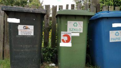 W Bytomiu ruszyły kontrole segregacji odpadów. Będą naklejki na koszach. Fot. UM w Bytomiu