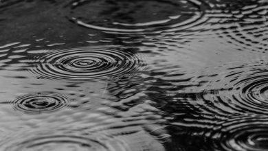 Deszczówka z dotacją w Dąbrowie Górniczej. Wsparcie to nawet 5 tys. złotych (fot.poglądowe/www.pixabay.com)