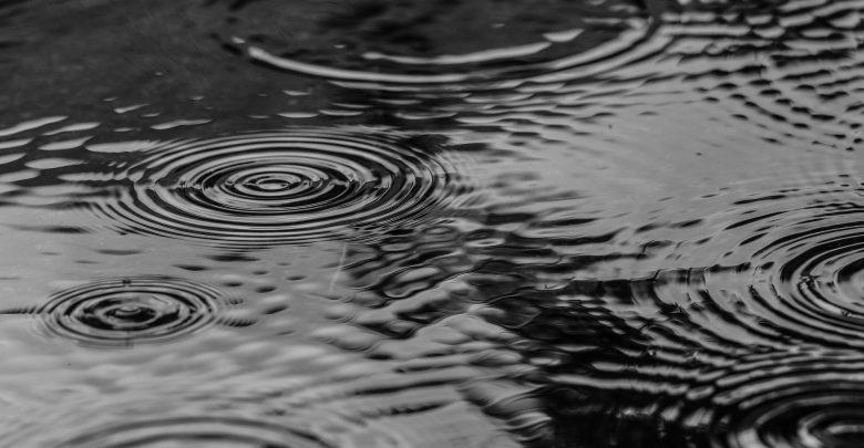 Ogrody deszczowe pomogą zatrzymać wodę w Czechowicach-Dziedzicach. [fot. ilustracyjna / www.pixabay.com]