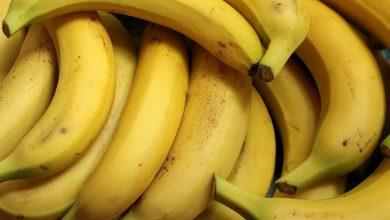 Kokaina w bananach. 19 kg w jednym ze sklepów sieci Biedronka (fot.poglądowe/www.pixabay.com)