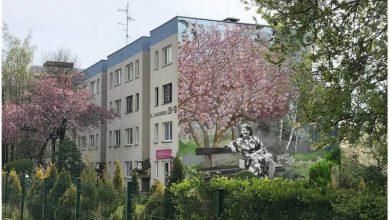 W Tychach powstanie mural Zofii Nałkowskiej (fot.UM Tychy)
