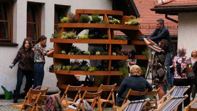 Katowice: Na Giszowcu powstał ogród w kształcie kuli! Zajmą się nim mieszkańcy