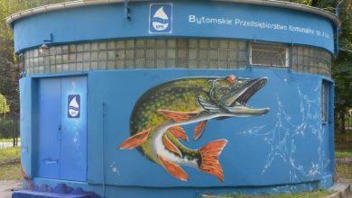 """Ryby """"pływają"""" na przepompowni w Bytomiu. Fot. UM w Bytomiu"""